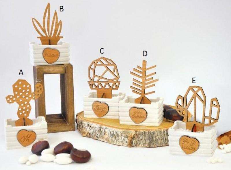 Cactus legno ciliegio in cassetta resina CM 7.5x4.5 con cuore legno personalizzato.